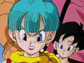 Dbz242(for dbzf.ten.lt) 20120404-16111999