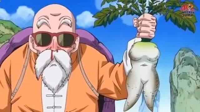 File:Roshi.jpeg