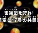 Caça aos caçadores! A aliança de Goku e 17!