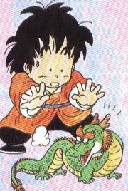 DragonBoy&SmallDragon