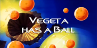 Vegeta Has a Ball