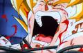 RoC - Goku pain