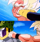 GokuCellWildSense