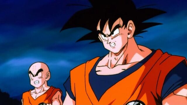 File:Krillin Goku Faces Lord-Slug.JPG