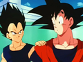 Vegata and Goku after Trunks won