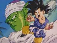 Goku&piccolo ed2