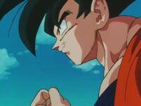 Goku1.jpg