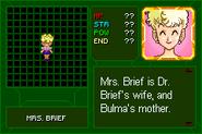 Dragon Ball Z - Buu's Fury 1403123567946