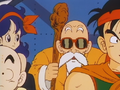 Roshi gives his opinions