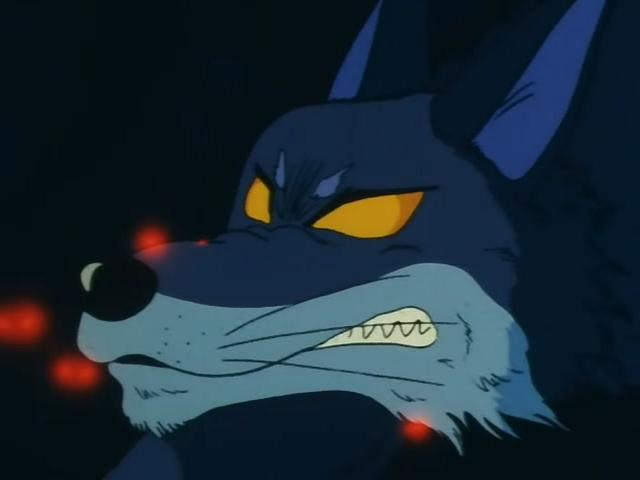 File:A wolf from skull valley.jpg