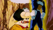 19VegetaAbsorb