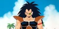 Kakorate: Saiyan Warrior