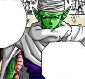 Piccolo18 color