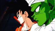 Goku & Piccolo (Deadzone)