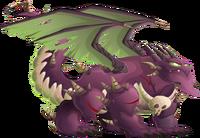 Nirobi Dragon 3