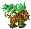 Tropical Dragon 2