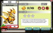 Shaolin Dragon Lvl 7