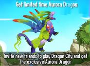 Aurora Offer