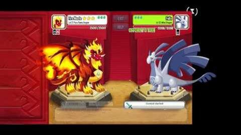 Dragon city Pure flame dragon combat
