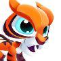 Tiger Dragon m1