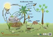 BiodiversityWeb