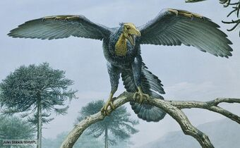 Archaeopteryx 1