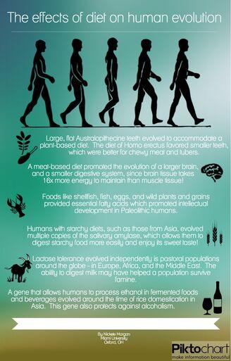 Diet&Evolution