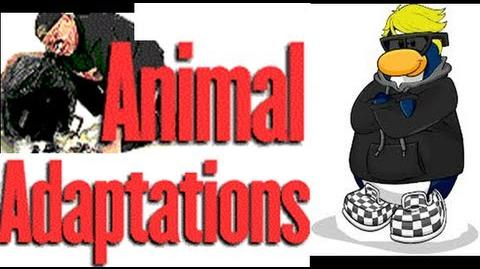 Adaptations in Animals -Video lesson for Kids