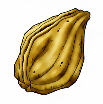 File:Dragon Quest 8 - Seed of Strength.png