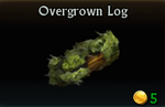 Overgrown Log