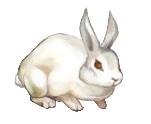 File:Killer Rabbit.png