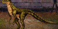Swift Sodscale Dragon