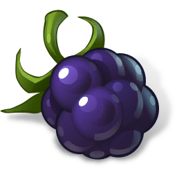 File:FoodBlackberry.png