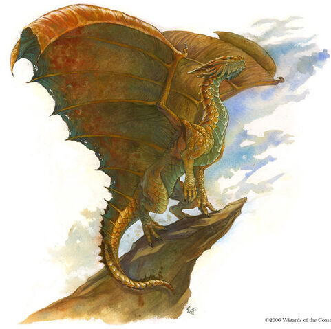 File:Copper drake.jpg