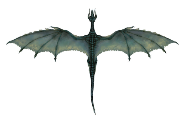 File:Black Dragon (overhead).png