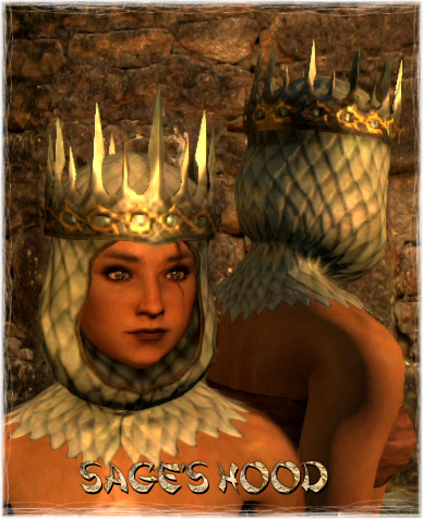 File:Armour Head Sage's Hood.png