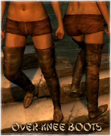File:Armour Legs Over-Knee Boots.png