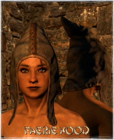 File:Armour Head Faerie Hood.png