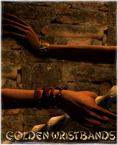 File:Armour Arms Golden Wristbands.png