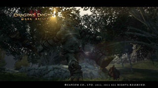 Dragon's Dogma Dark Arisen Screenshot CycLeg