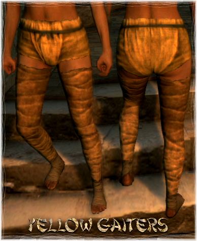 File:Armour Legs Yellow Gaiters.png