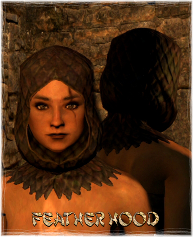 File:Armour Head Feather Hood.png