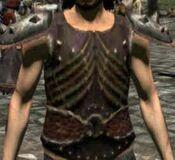Bone Plate Armor