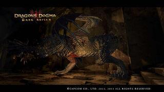 Dragon's Dogma Dark Arisen Screenshot 15-0
