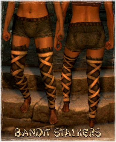 File:Armour Legs Bandit Stalkers.png