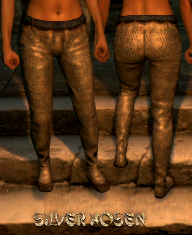 File:Armour Legs Silver Hosen.png