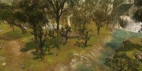 Norklanth Forest