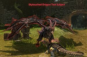 Skytouched Dragon Test Subject