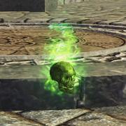 Companion skull