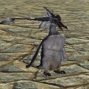 Companion penguin